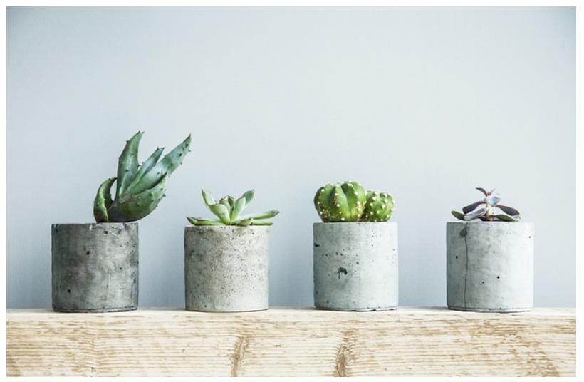 Dai vasi da fiore ai grattacieli: come è nato il cemento armato